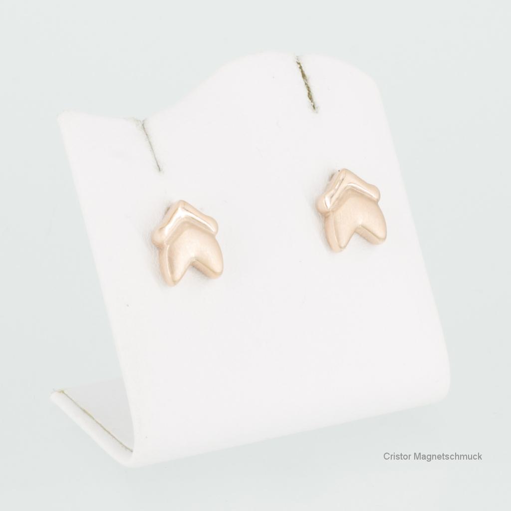 E8273RGSet - Energiearmband und Ohrringe im Set rosegold